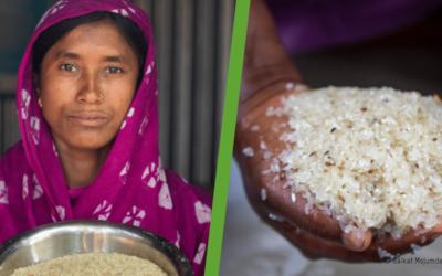 Un «scandaleux» manque de financement pour 55 millions de personnes en situation d'insécurité alimentaire extrême