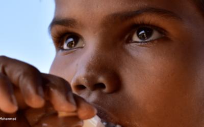 Les réalités des Rohingyas – L'avenir des Rohingyas